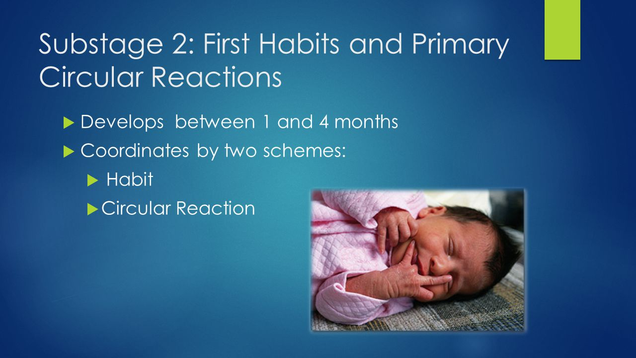 Substage 2: First Habits and Primary Circular Reactions