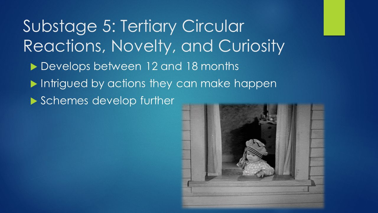 Substage 5: Tertiary Circular Reactions, Novelty, and Curiosity