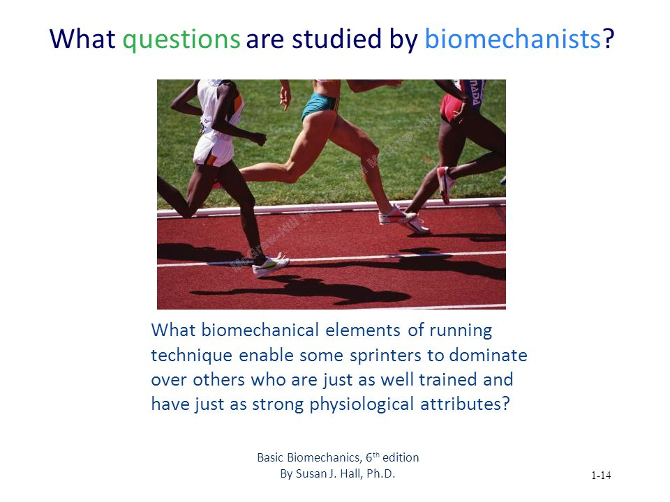 Basic Biomechanics 6th Edition Ppt Video Online Download