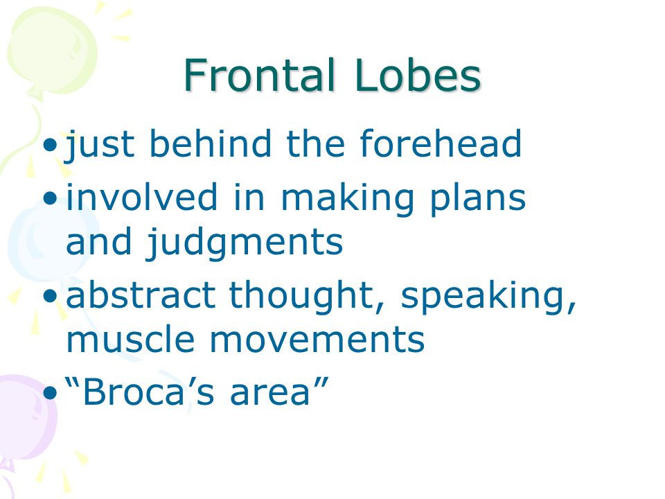 Frontal Lobes just behind the forehead
