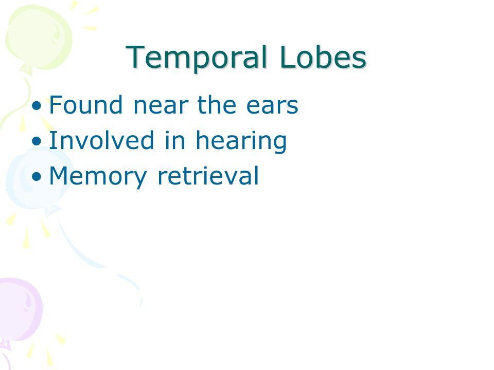 Temporal Lobes Found near the ears Involved in hearing