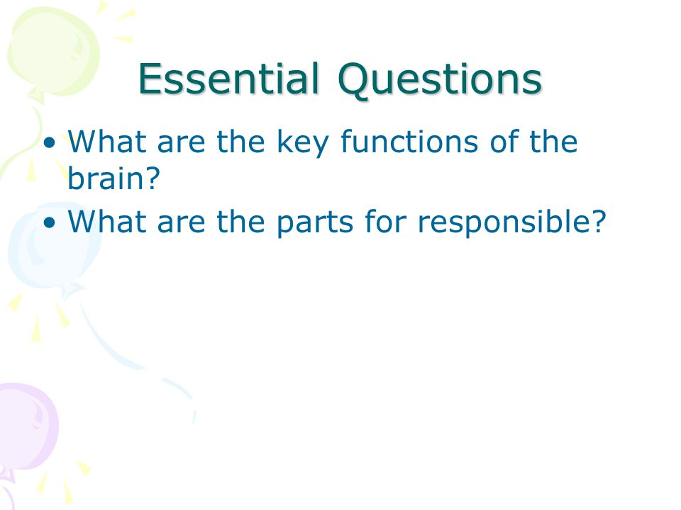 Essential Questions What are the key functions of the brain