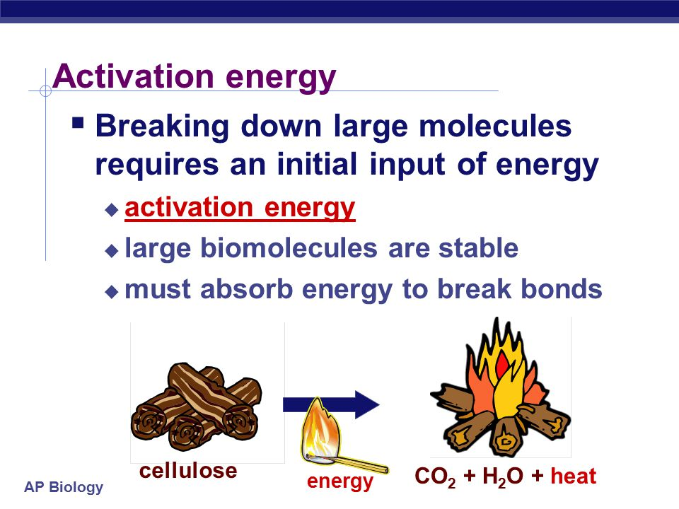 Activation energy Breaking down large molecules requires an initial input of energy. activation energy.