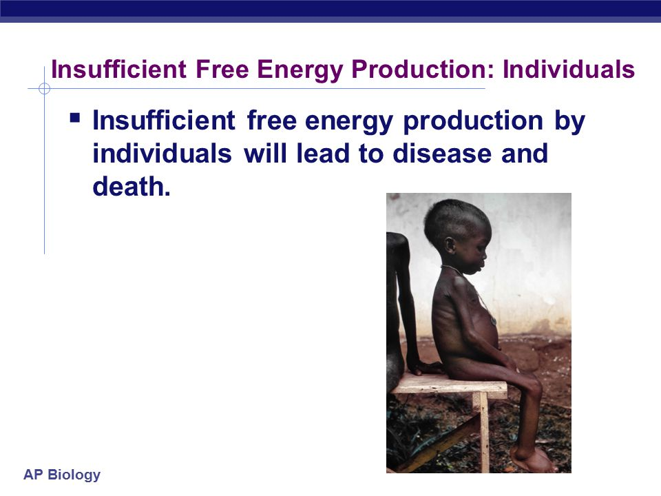 Insufficient Free Energy Production: Individuals