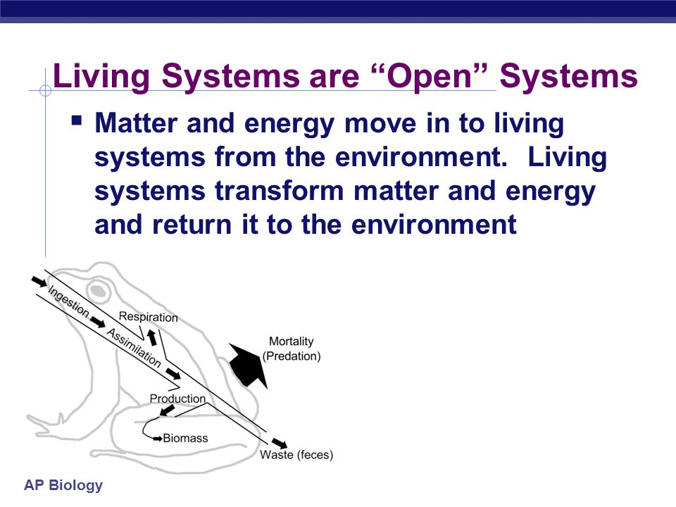 Living Systems are Open Systems
