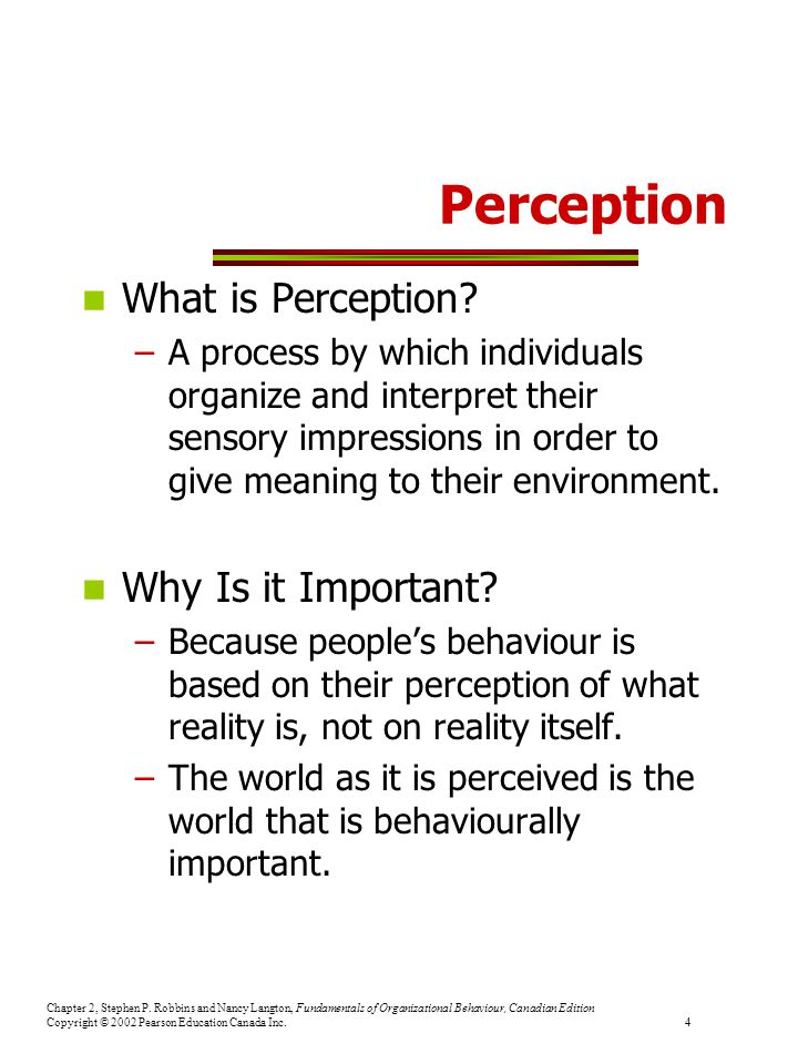 Perception What is Perception Why Is it Important