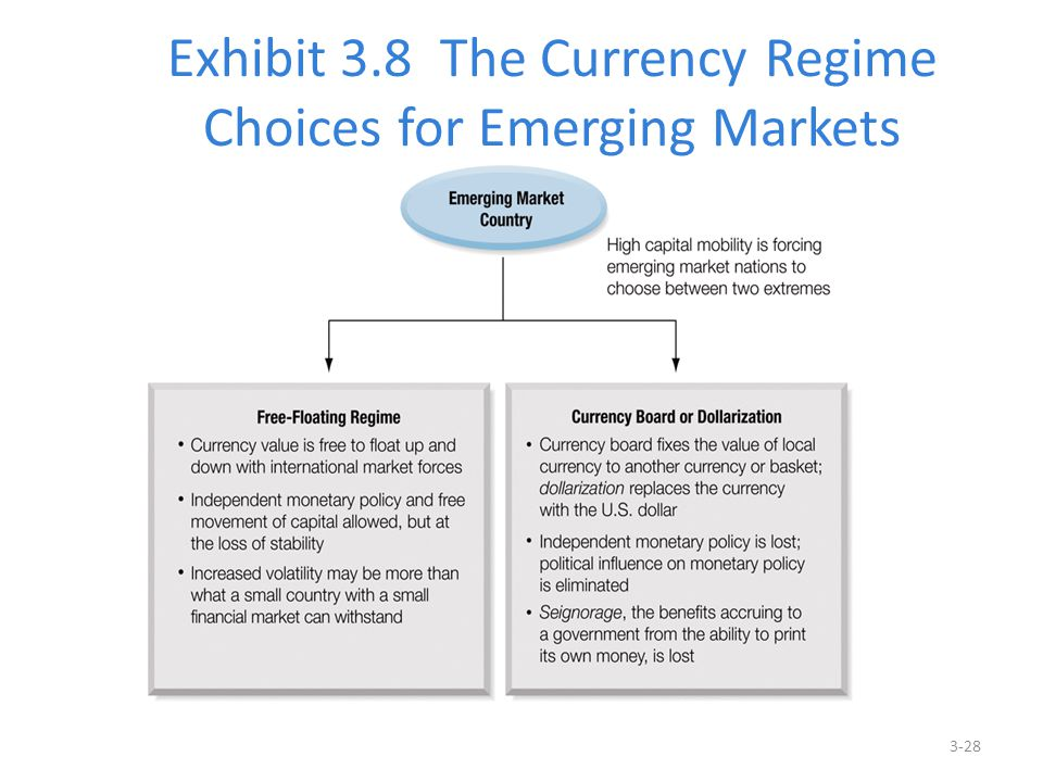Exhibit 3.8 The Currency Regime Choices for Emerging Markets