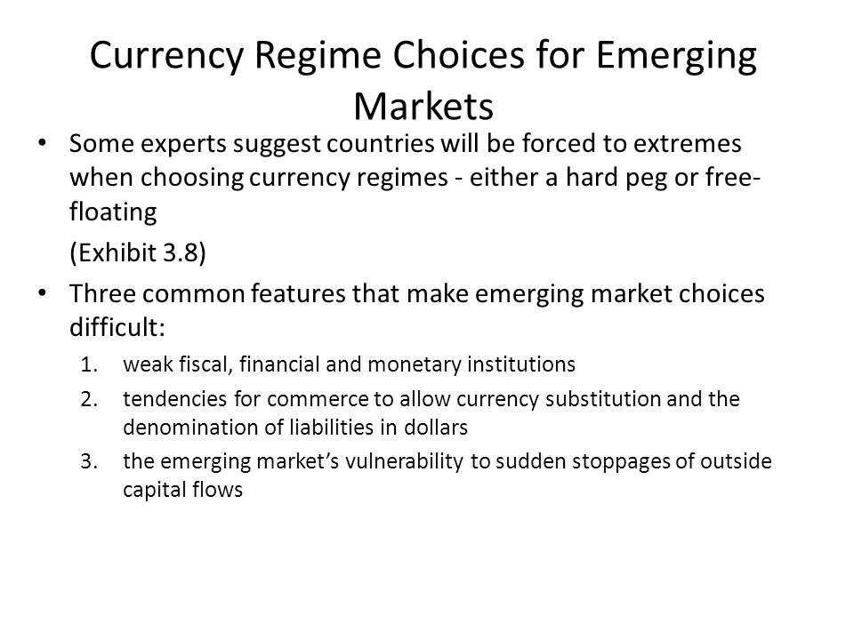 Currency Regime Choices for Emerging Markets