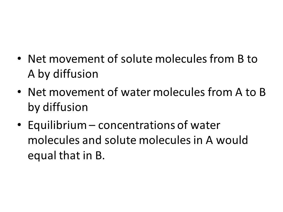 Net movement of solute molecules from B to A by diffusion