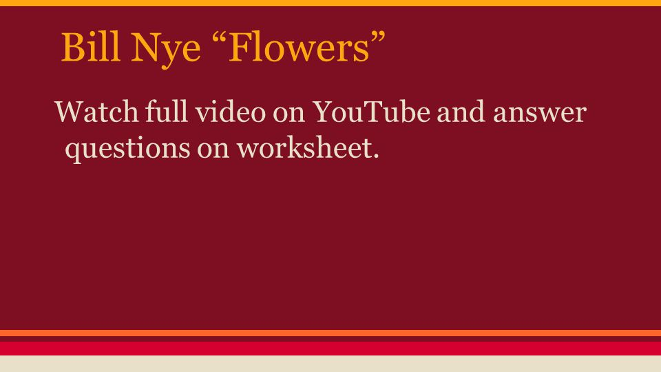 Flowering Plants 6l11 Summarize The Basic Structures And. 5 Bill Nye. Worksheet. Bill Nye Plants Video Worksheet At Clickcart.co