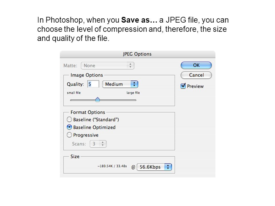 File Formats Different applications (programs) store data in