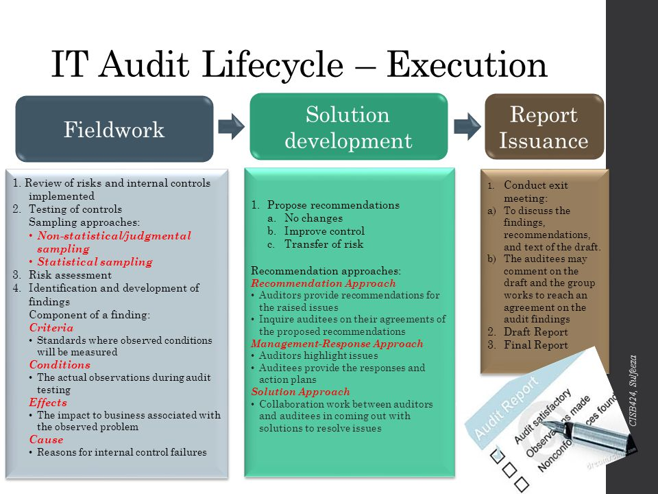 Conducting the IT Audit - ppt video online download