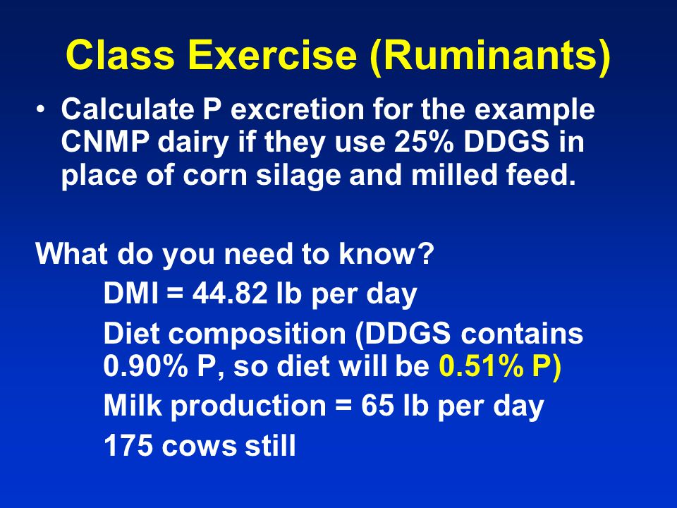 Ruminant Animal Feed Management Issues and Practices - ppt