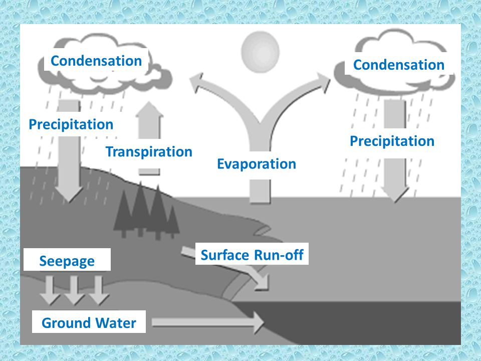 Condensation Condensation. Precipitation. Precipitation. Transpiration. Evaporation. Surface Run-off.