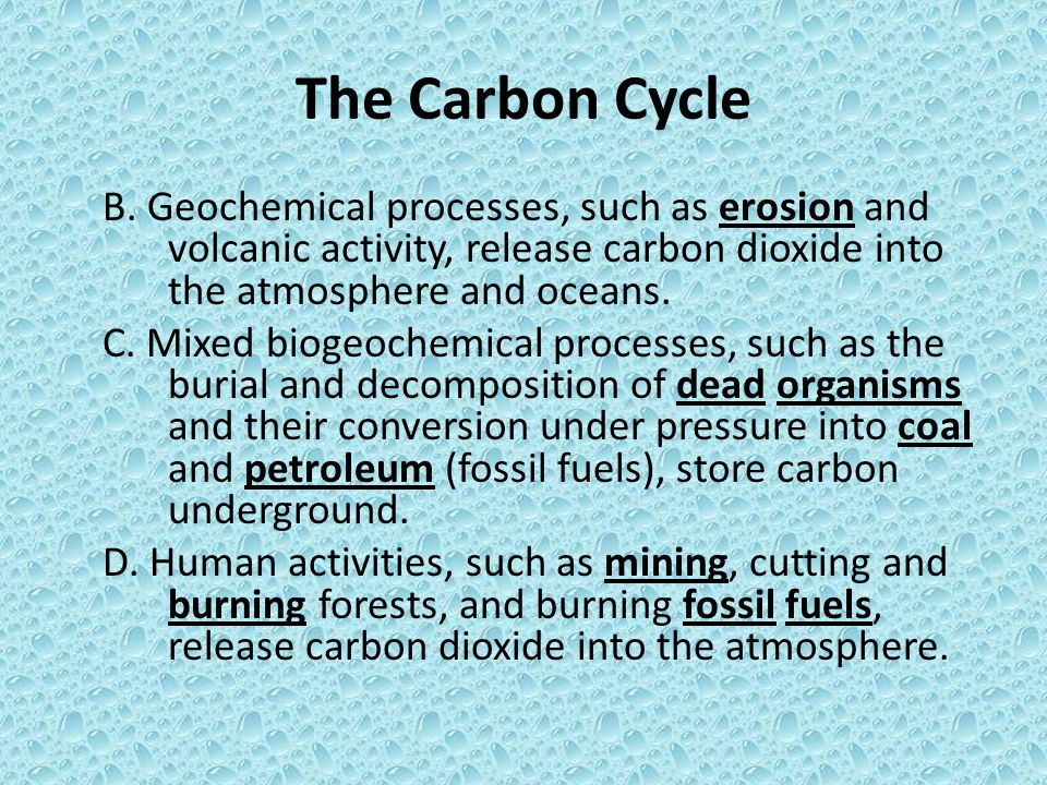 The Carbon Cycle B. Geochemical processes, such as erosion and volcanic activity, release carbon dioxide into the atmosphere and oceans.