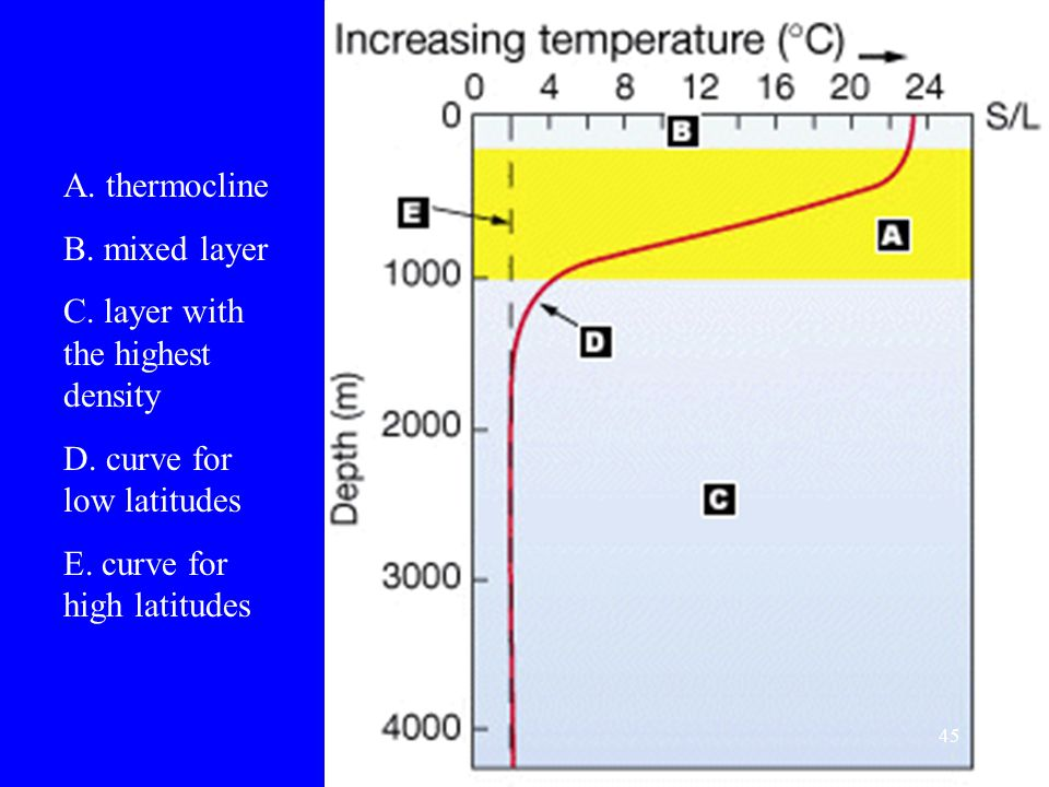 A. thermocline B. mixed layer. C. layer with the highest density.