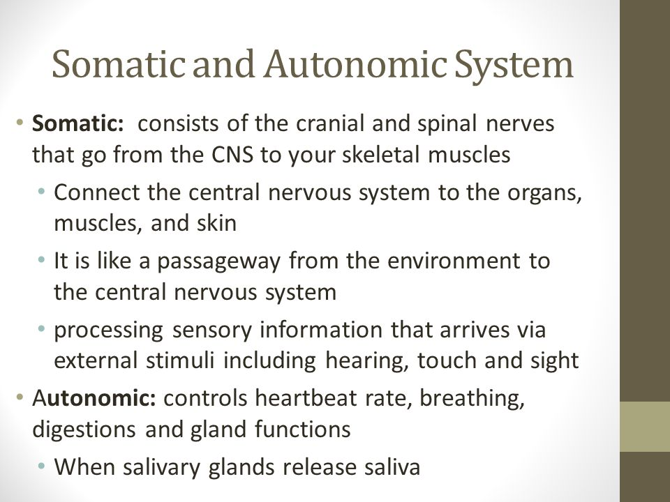 Somatic and Autonomic System