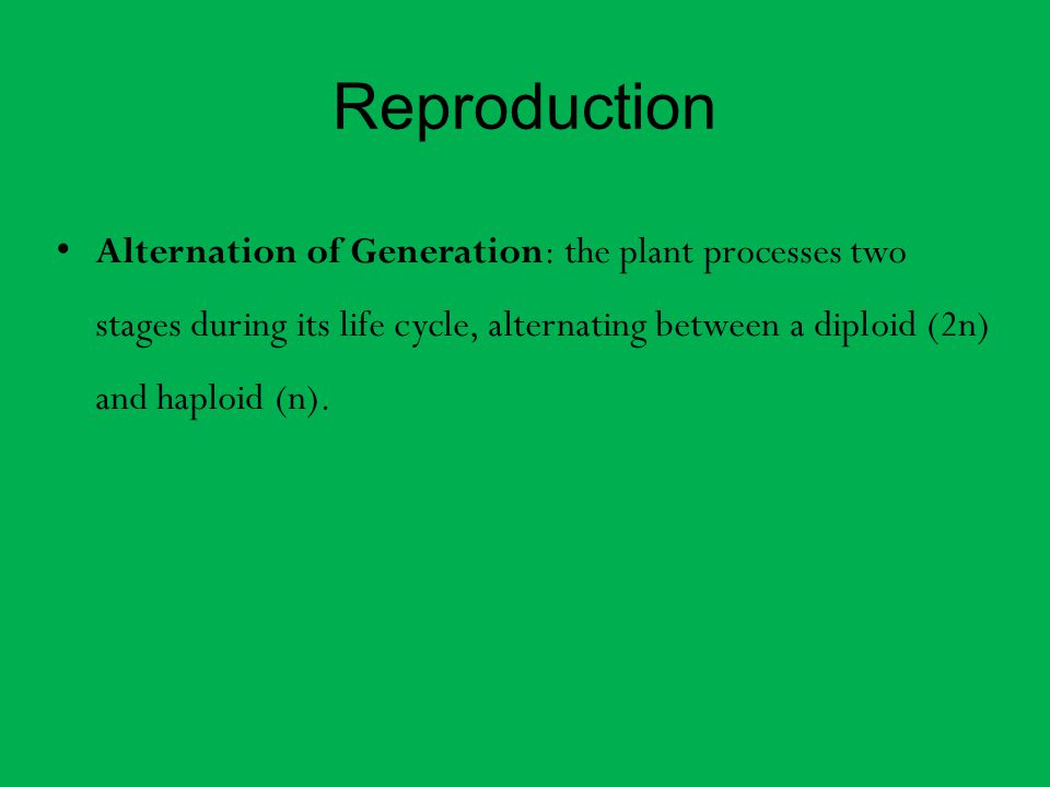 Reproduction Alternation of Generation: the plant processes two stages during its life cycle, alternating between a diploid (2n) and haploid (n).