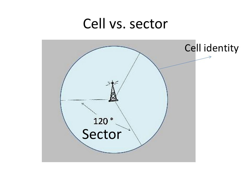 Cell vs. sector Cell identity Sector