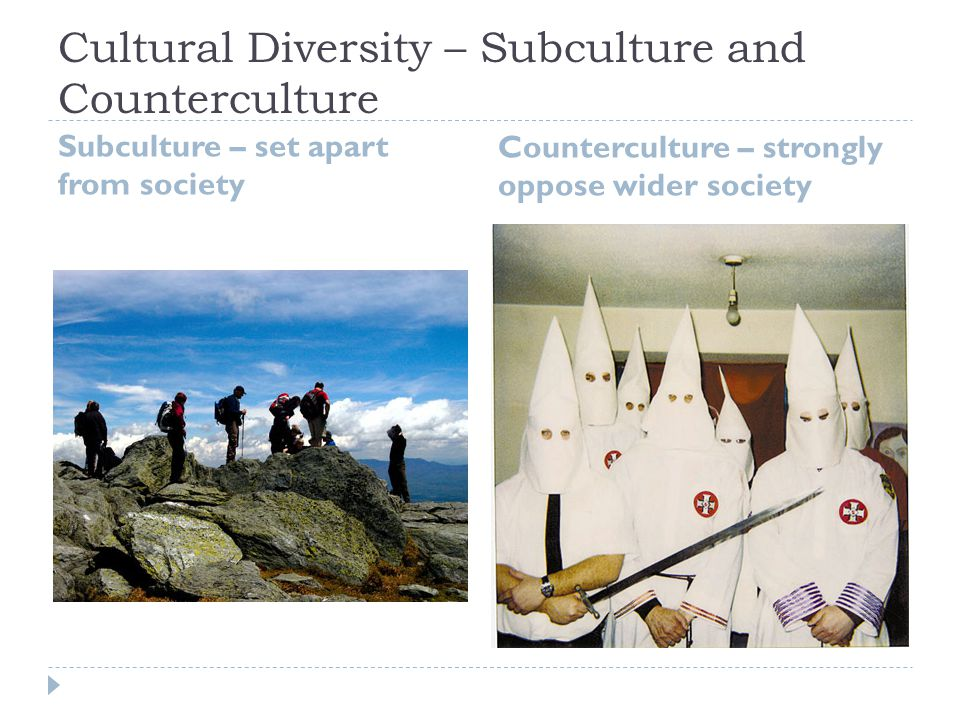 Cultural Diversity – Subculture and Counterculture