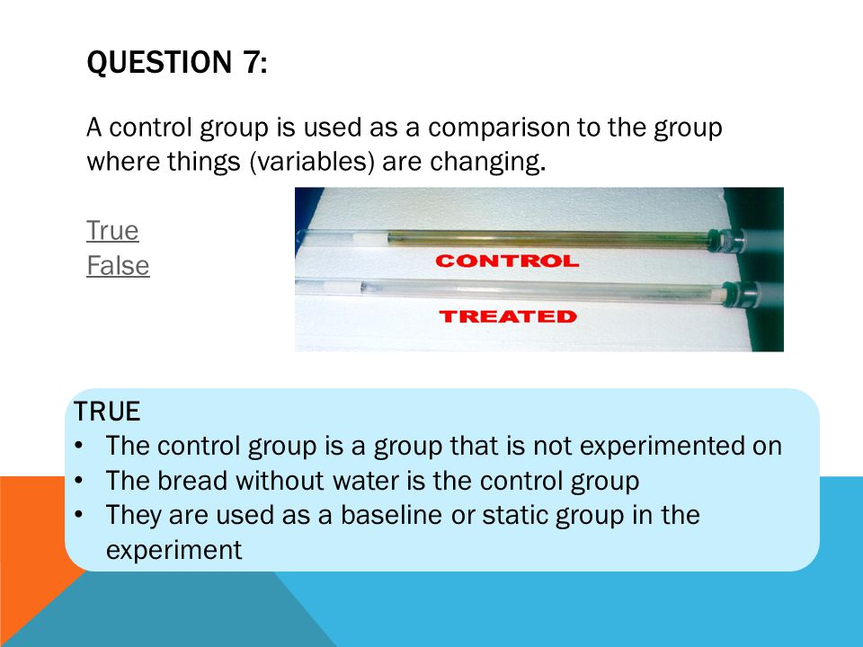 QUESTION 7: A control group is used as a comparison to the group where things (variables) are changing. True False.