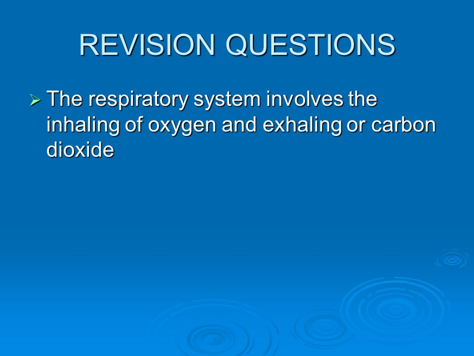 REVISION QUESTIONS The respiratory system involves the inhaling of oxygen and exhaling or carbon dioxide.