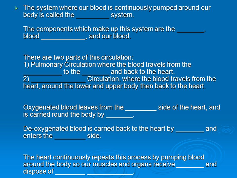 The system where our blood is continuously pumped around our body is called the system.