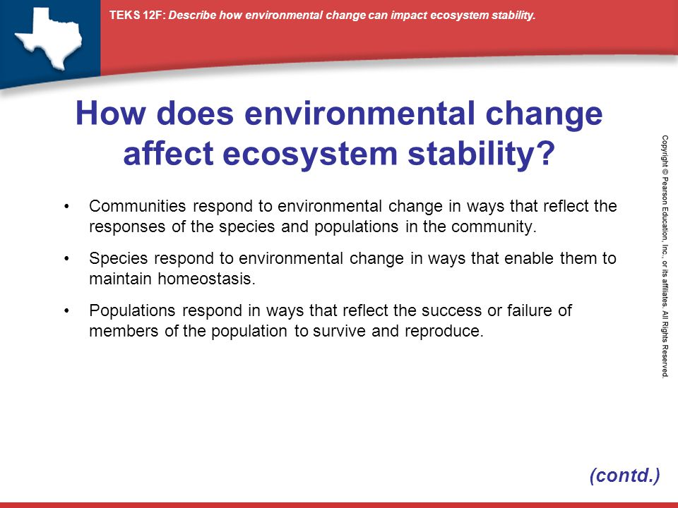 species diversity and ecosystem stability The ecosystems present a great diversity worldwide and use various functionalities according to ecologic regions indeed the ecosystems render diverse services to humanity from their composition and structure but the tolerable levels are u.