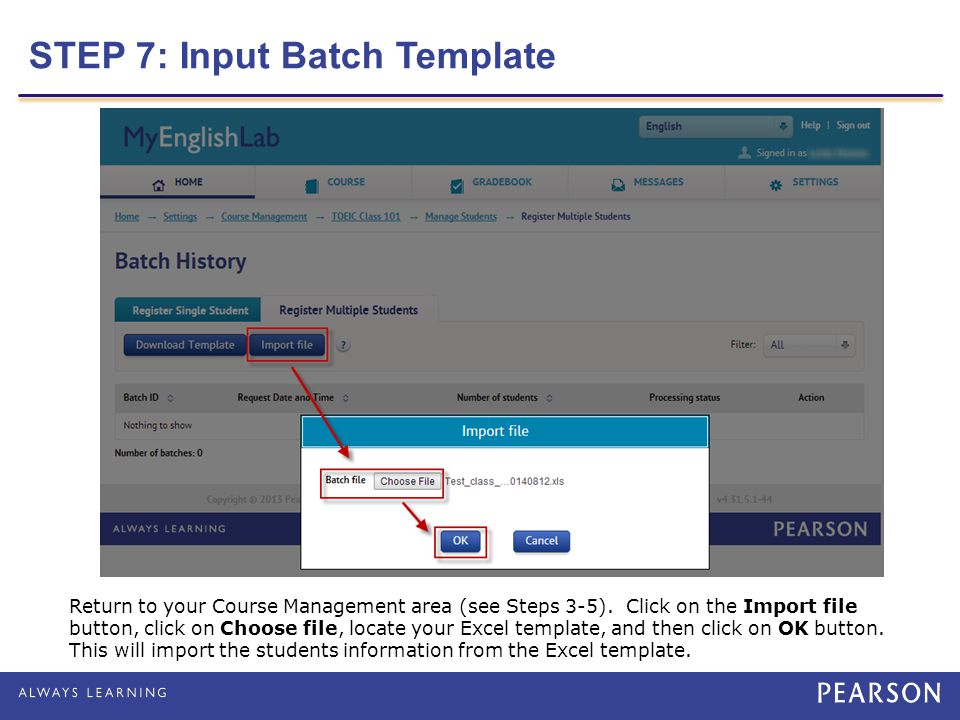 STEP 7: Input Batch Template
