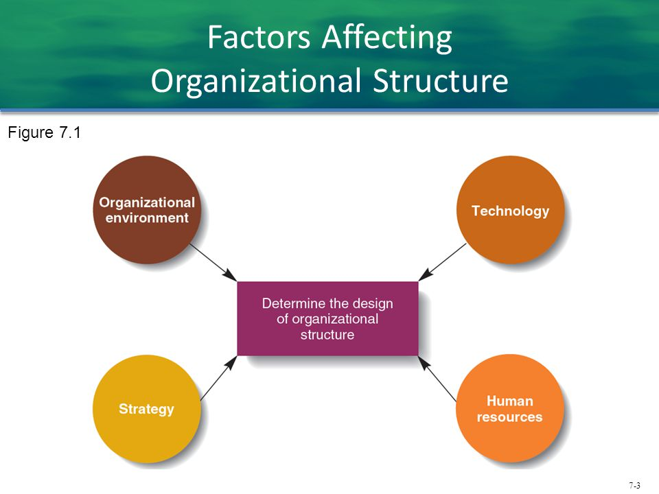 Factors Affecting Organizational Structure