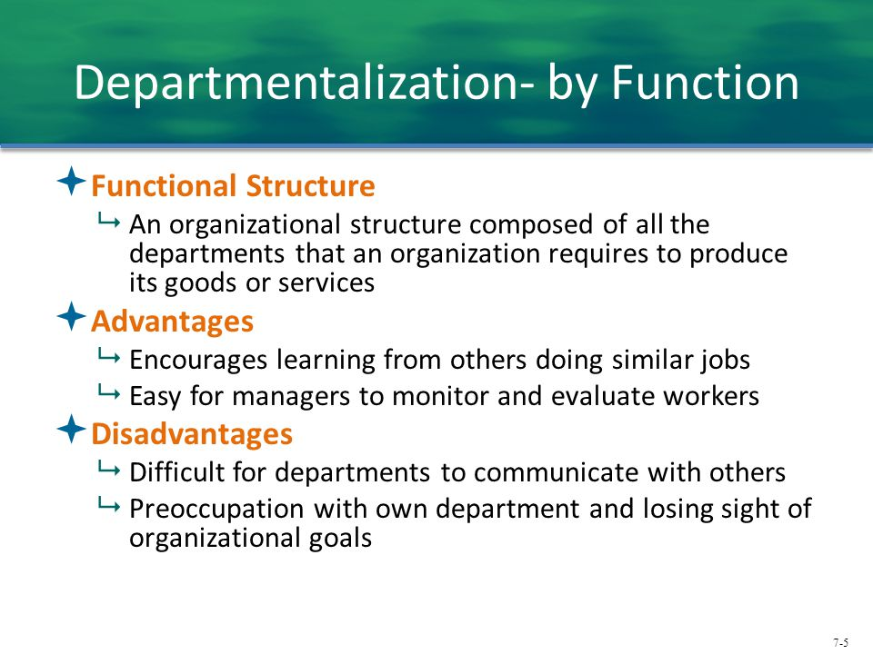 Departmentalization- by Function