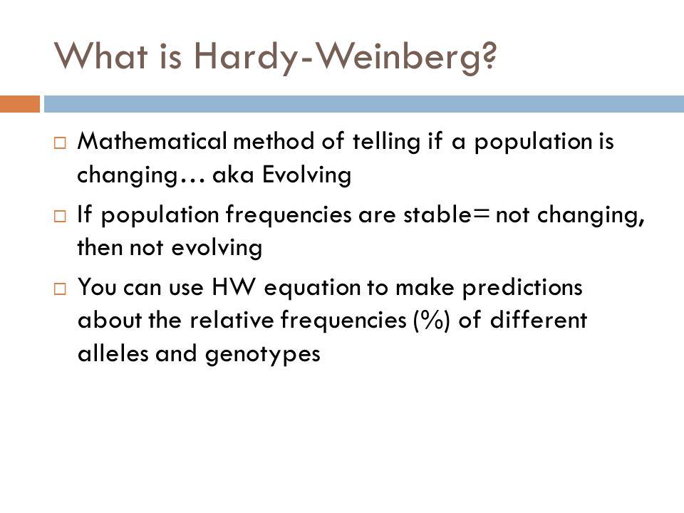 Evidence For Evolution Hardy Weinberg Equation Ppt Video Online