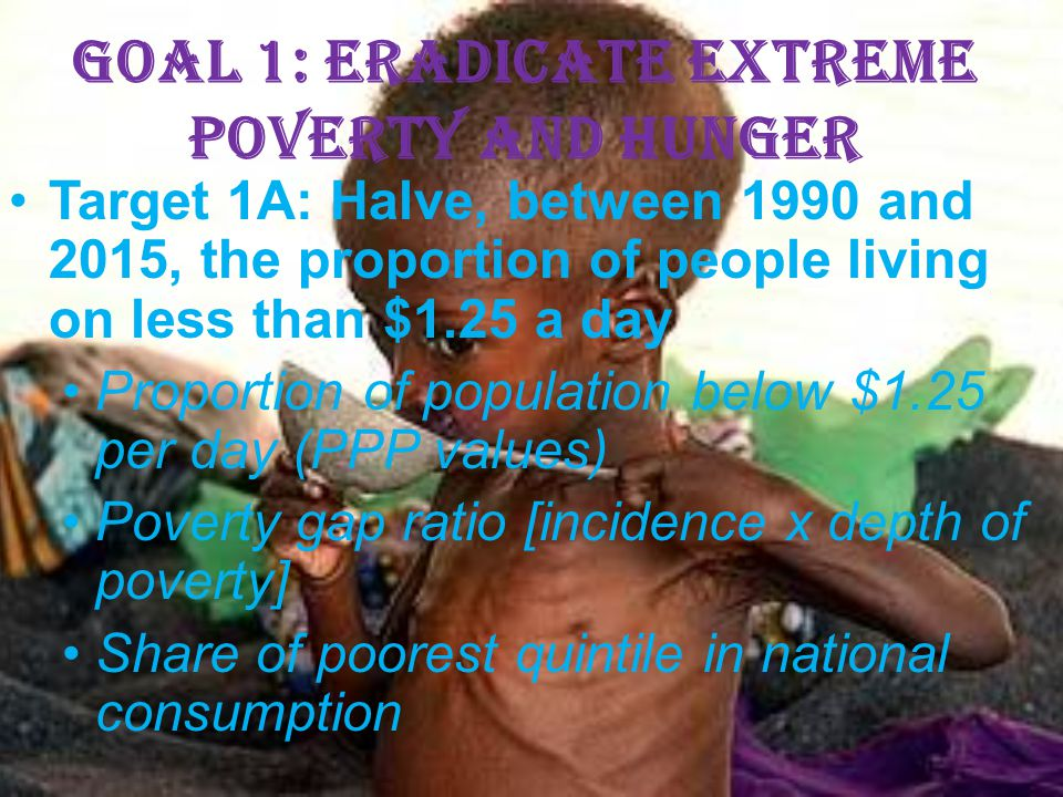 Goal 1: Eradicate extreme poverty and hunger