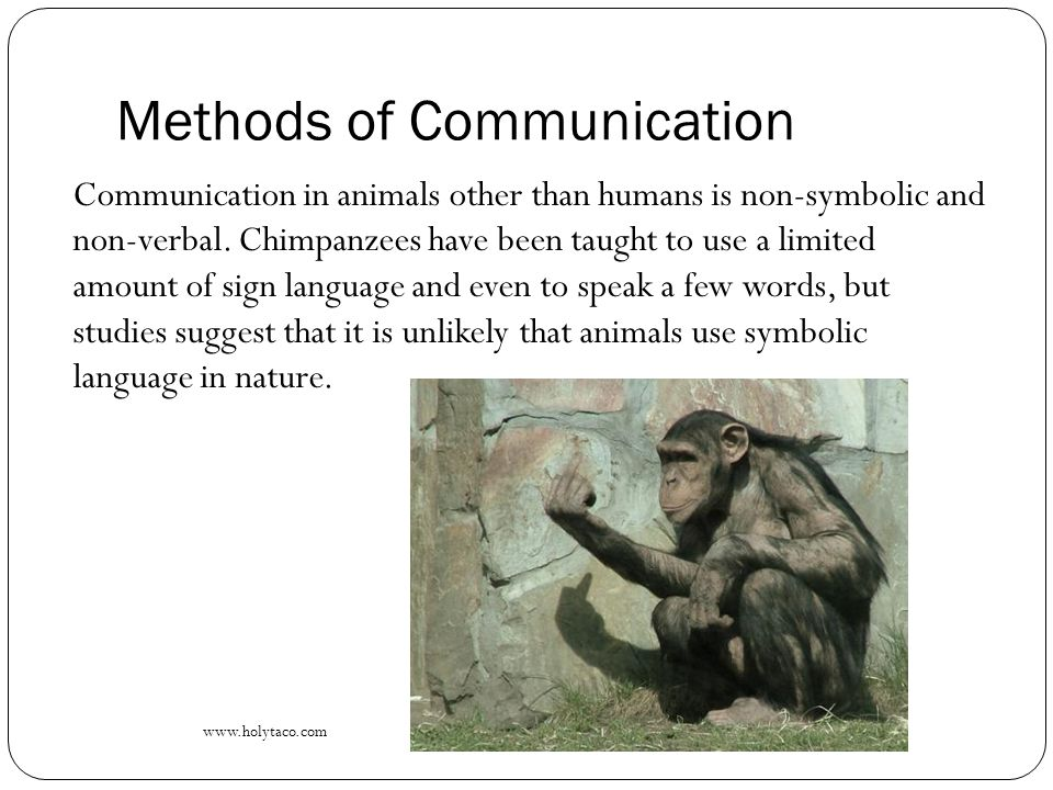 define the main methods of non verbal communication A traditional method of doing research on verbal and nonverbal communication is the closed-ended quantitatively focused survey these communities of communicative resources are cultures thus, he defines culture as a what seem to be the main values that undergird blackfoot communication.
