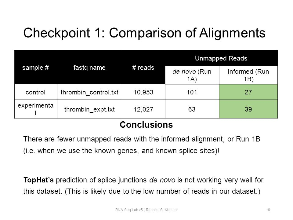 Checkpoint 1: Comparison of Alignments
