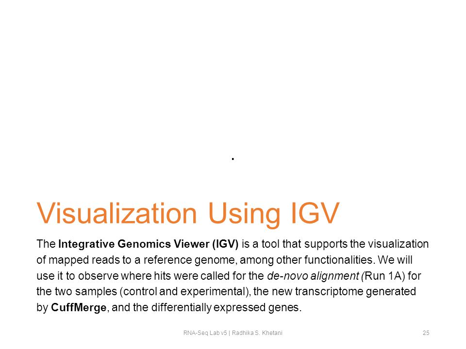 Visualization Using IGV