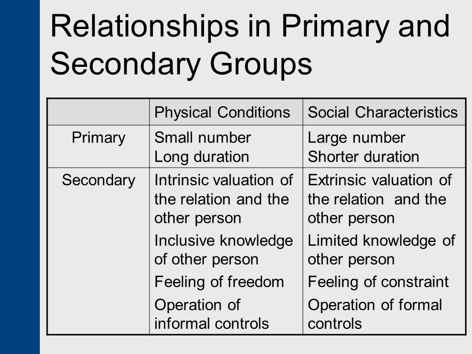 Relationships in Primary and Secondary Groups