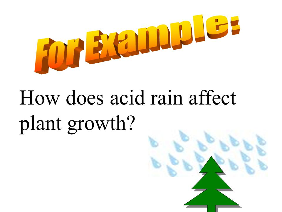 How does acid rain affect plant growth