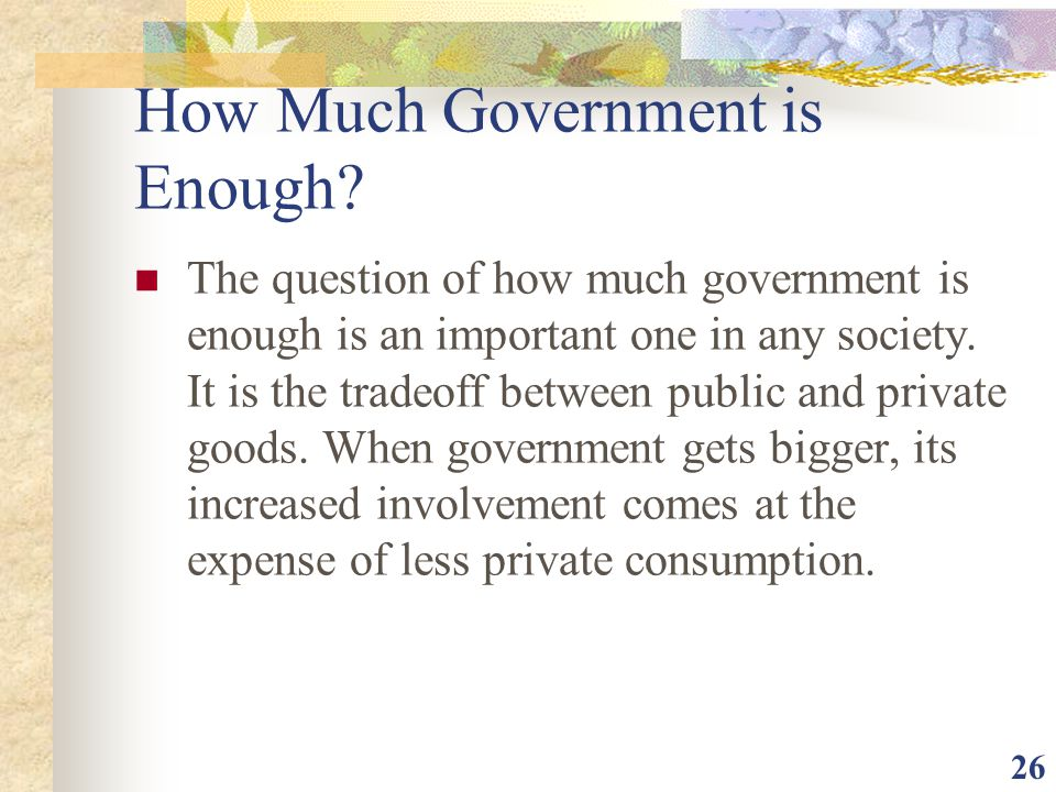 How Much Government is Enough