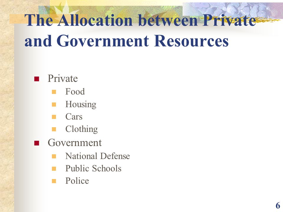 The Allocation between Private and Government Resources