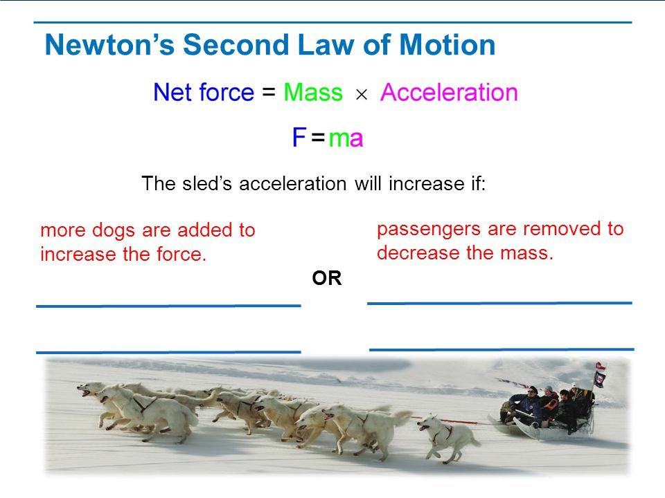 newtons second law - practical report essay Lesson 24: newton's second law (motion) to really appreciate newton's laws, it sometimes helps to see how they build on each other the first law describes what.