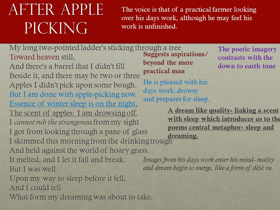 critical analysis of after apple picking by robert frost