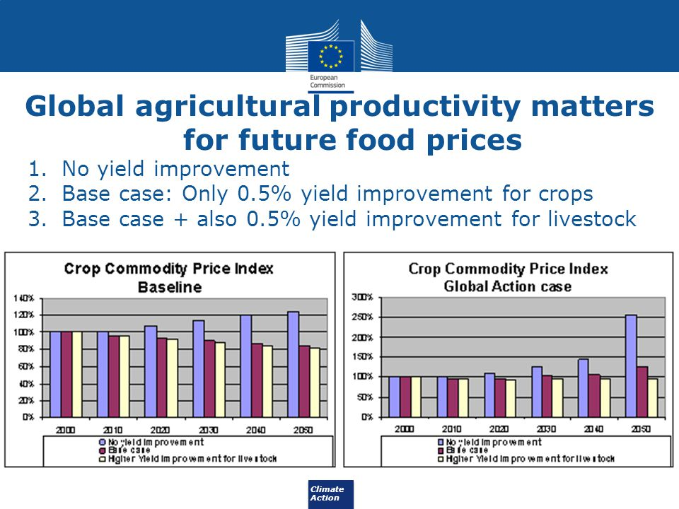 Global agricultural productivity matters for future food prices