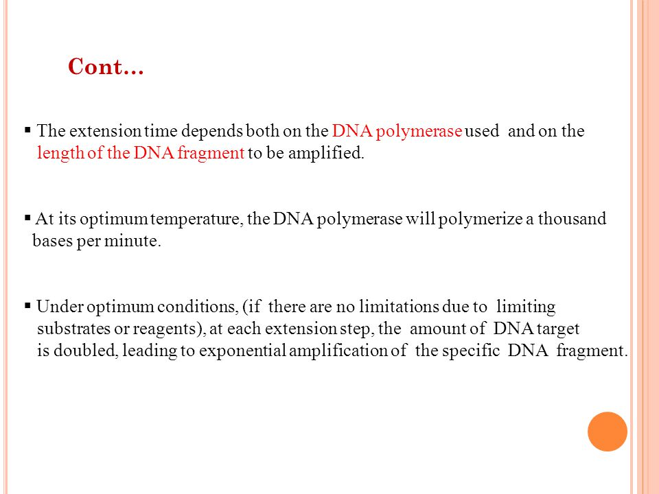 Cont… The extension time depends both on the DNA polymerase used and on the. length of the DNA fragment to be amplified.