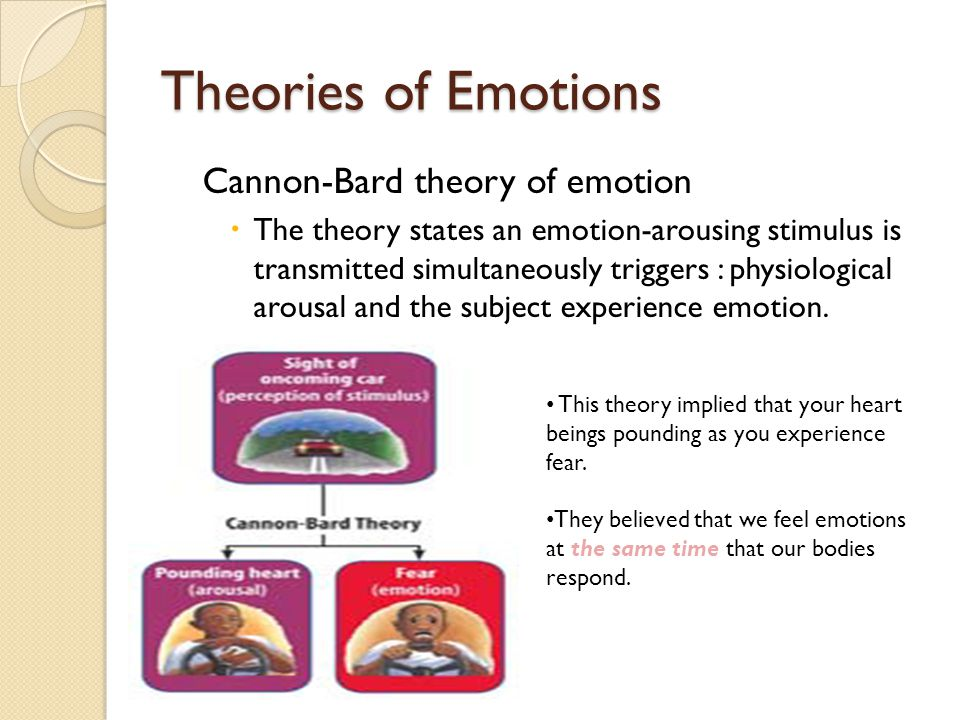 according to the cannon bard theory of emotion