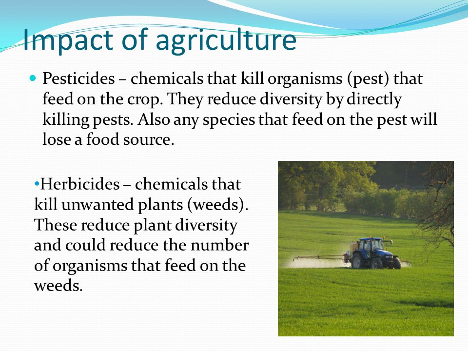 Impact of agriculture