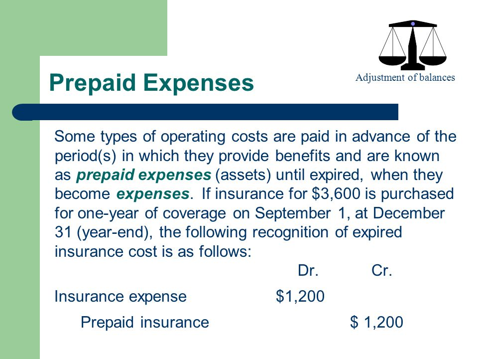 Prepaid Expenses Adjustment of balances.