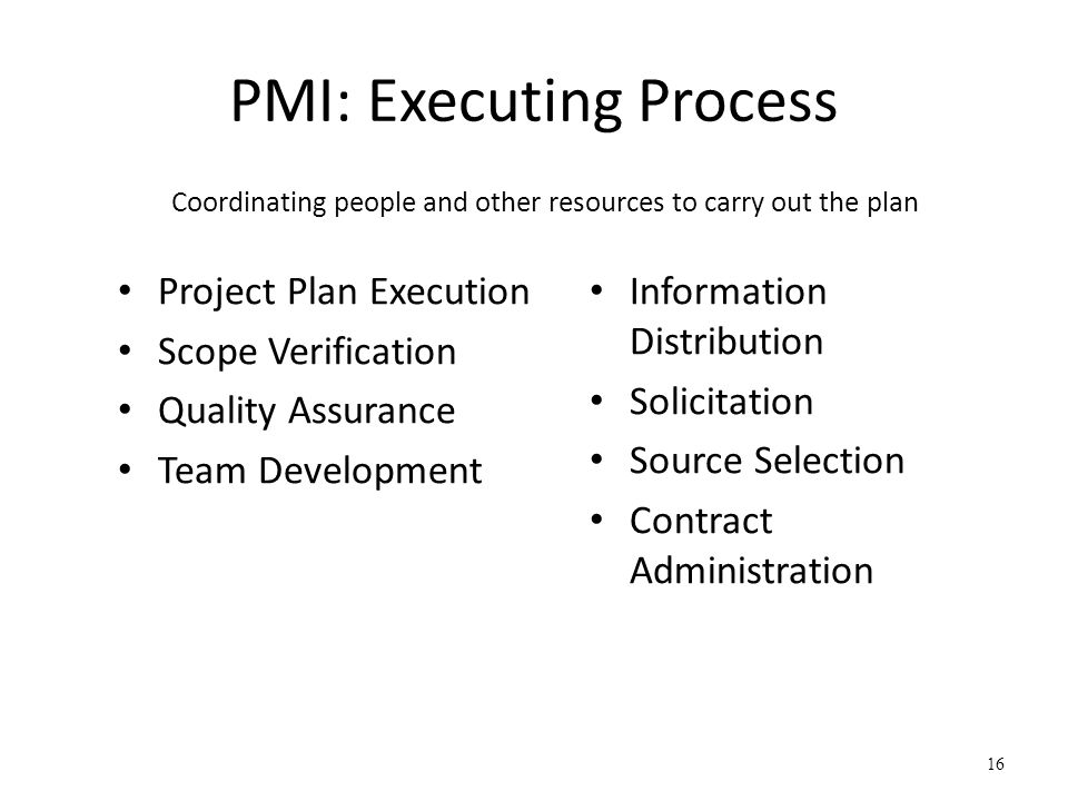 PMI: Executing Process