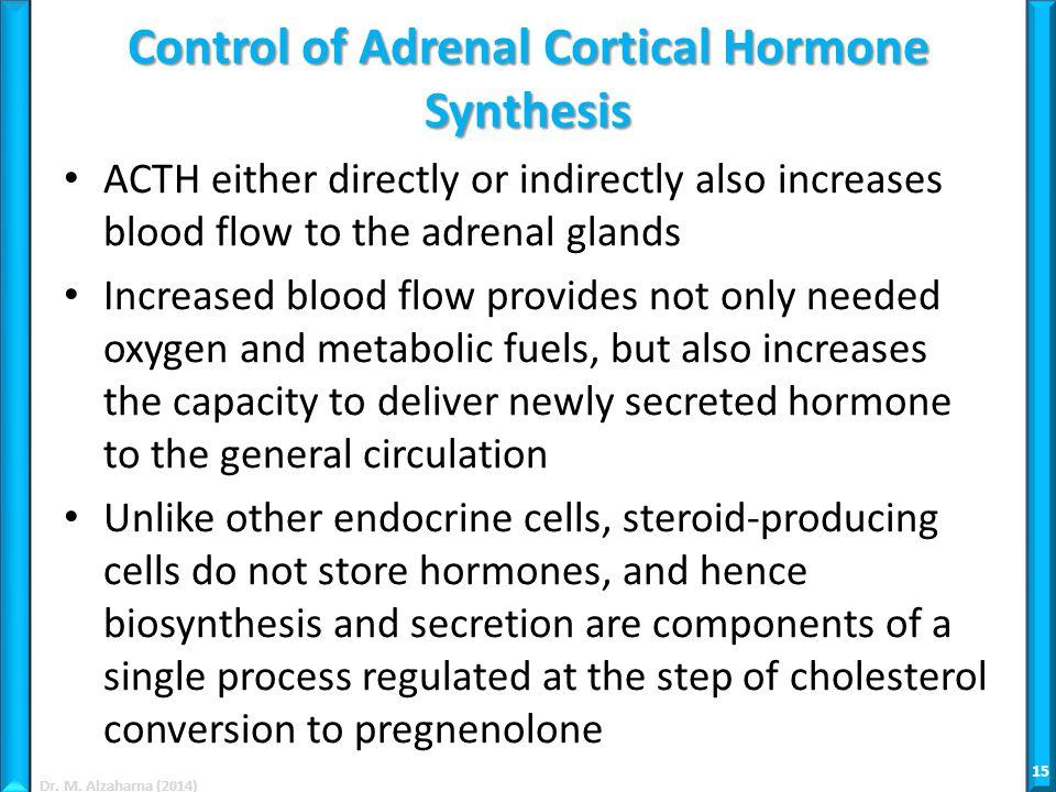 Adrenal Glands Ppt Video Online Download