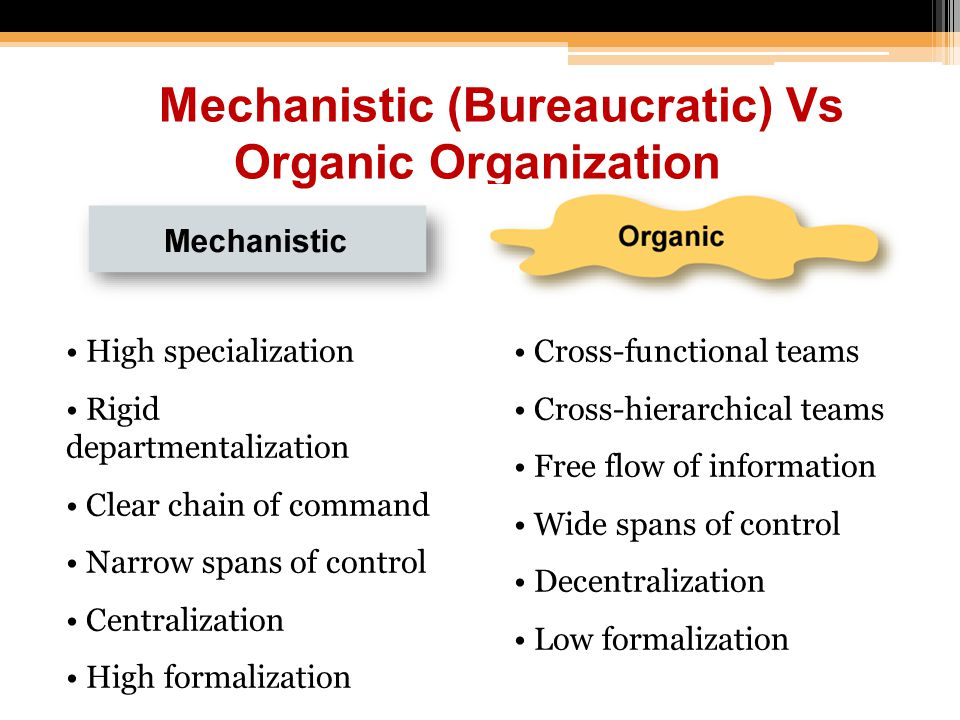 Mechanistic (Bureaucratic) Vs Organic Organization